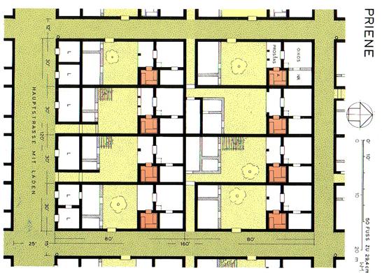 Priene Parsel ve Ev Planı