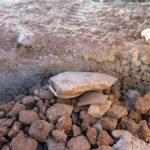 Peyzaj Çalışmasında Kullanılan Topraktan Arkeolojik Malzeme Çıktı 1